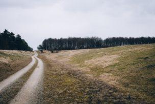 土地の分筆売買での任意売却における担保解除料の交渉事例
